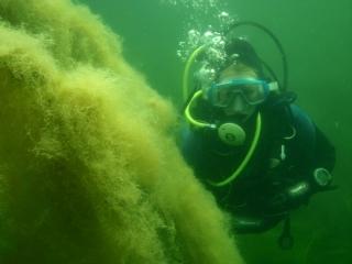 Ann-Kathrin unter Wasser