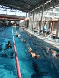 Einschwimmen mit Flossen