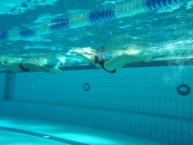 Einschwimmen ohne Flossen